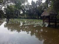 Vinh Long, Mekong River